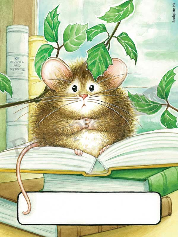 B286-Mouse-on-open-book-