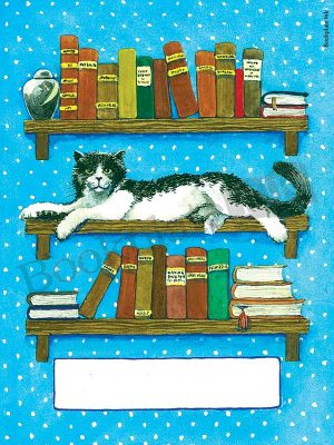 B190-Cat-laying-on-bookshelf-