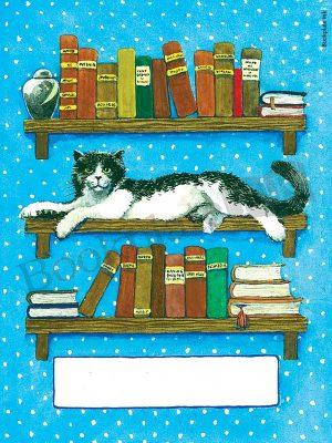 B190-Cat-laying-on-bookshelf-