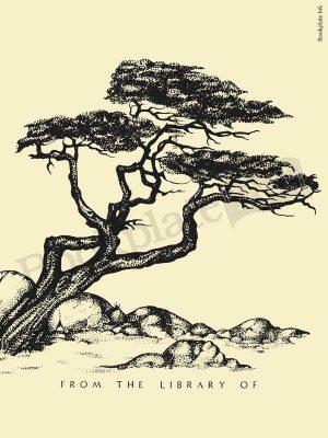 B61-Windswept-tree-over-rocks-bookplate