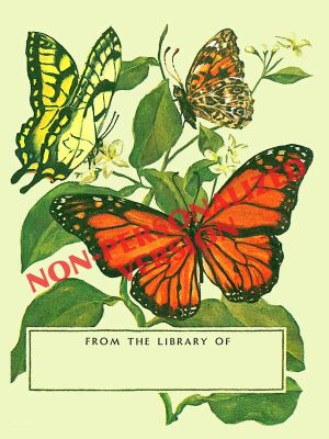 BP177-Tom-Till-butterfliesbookplate