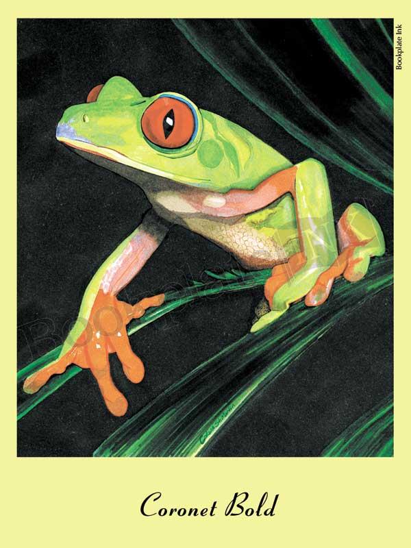 C103-tree-frog-bookplate