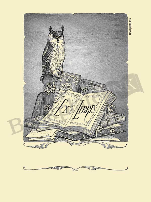 W3-Perched-owl-Pringle-bookplate