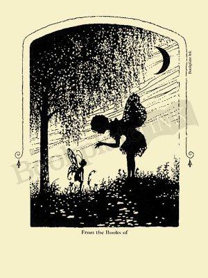 F101-Fairies-Under-Moonlight