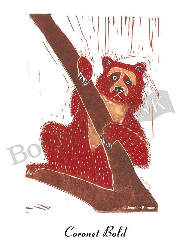 JB03-Ucumari-spectacled--bear-Jennifer-Berman-bookplate